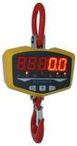 XZ-GLE 小量程直视电子吊秤